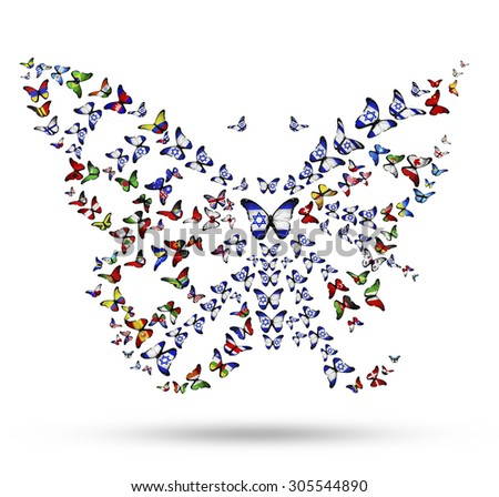 Butterfly from flying flag-butterflies as symbol of Israel identity in the world - stock photo