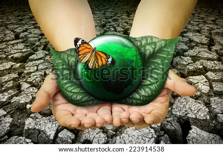 butterfly in hand on green world,environment concept  - stock photo