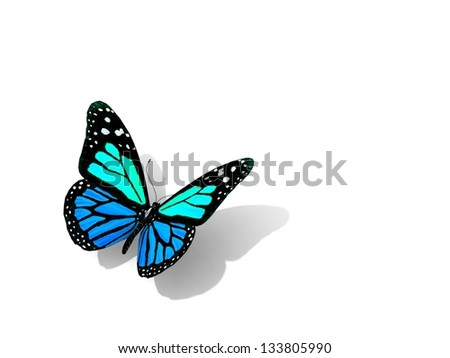 Butterfly isolated on white. Art and design concept. space for your text