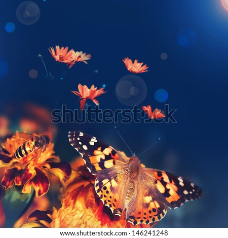 Butterfly monarch - stock photo