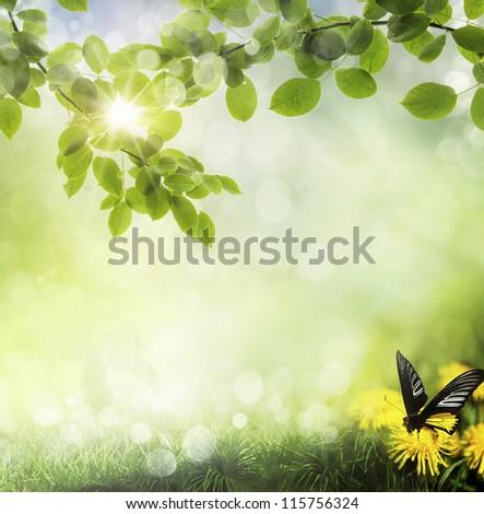 butterfly on a dandelion. spring background - stock photo