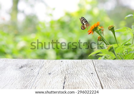 Butterfly on Zinnia flower with wooden table