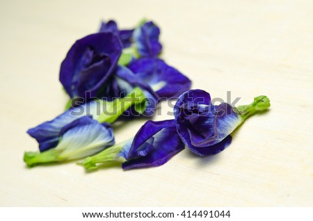 Butterfly pea or Blue pea flowers (Science name Clitoria ternatea L., other names are Orchid Station, Orchid travel) isolated on wooden background - stock photo