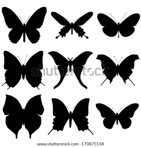 Butterfly silhouette set. Icon collection.  - stock photo