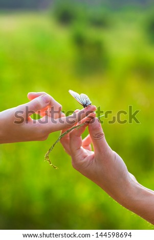 Butterfly sitting on woman's hand
