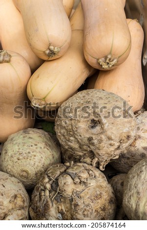 Butternut squash and celeriac on display at a greengrocers shop. - stock photo