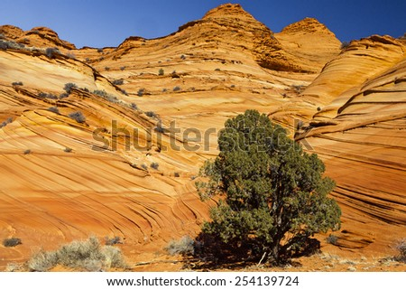 Buttes in Coyote Buttes South in Northern Arizona - stock photo