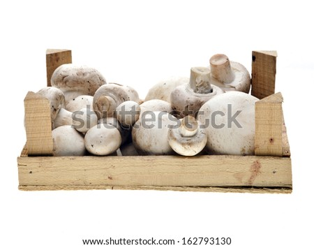 Button or champignon mushrooms in a crate isolated on white