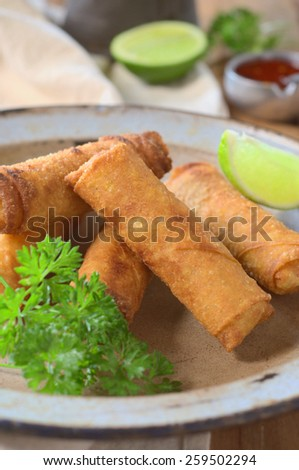 cabbage and mushrooms fried spring rolls. selective focus - stock photo
