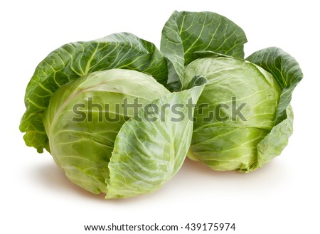 cabbage isolated - stock photo