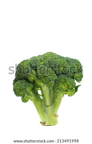 cabbage on a white background. - stock photo
