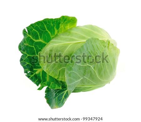 cabbage on white background - stock photo