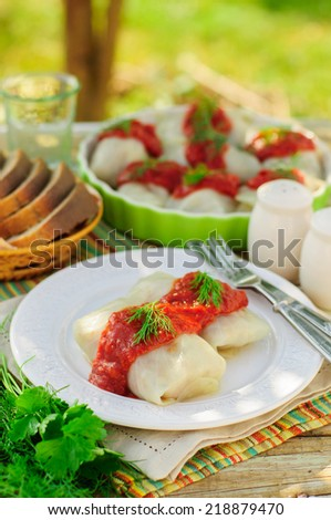 Cabbage Rolls with Tomato Sauce and Dill, Russian Golubtsy, Polish Golabki, copy space for your text - stock photo