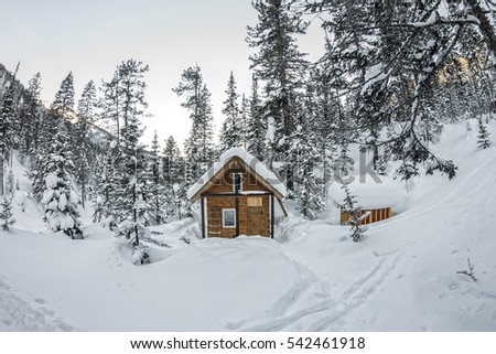 Cabin house chalets in winter forest with snow.