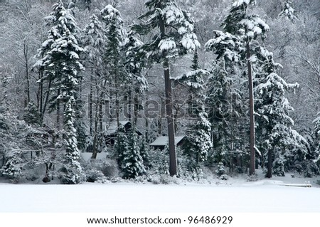 Cabins in the snow covered woods are barely visible - stock photo