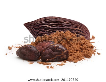 Cacao beans and powder isolated on white background - stock photo