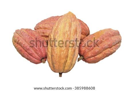 Cacao fruits isolated on white - stock photo