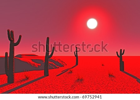 cacti in the desert at sunset - stock photo