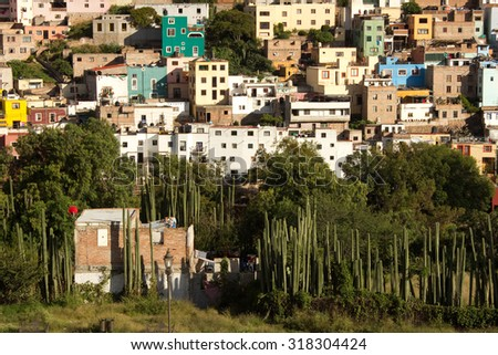 Cactus and vegetation  in front of hillside housing in Guanajuato, Mexico - stock photo