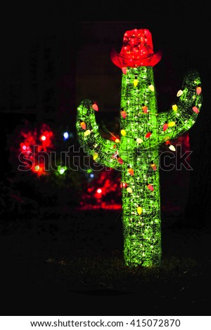 Christmas cactus stock images royalty free images for Cactus de navidad