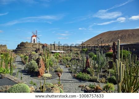 Cactus Garden Jardin De Cactus Lanzarote Stock Photo Image