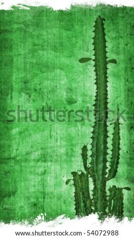 Cactus on paper - stock photo