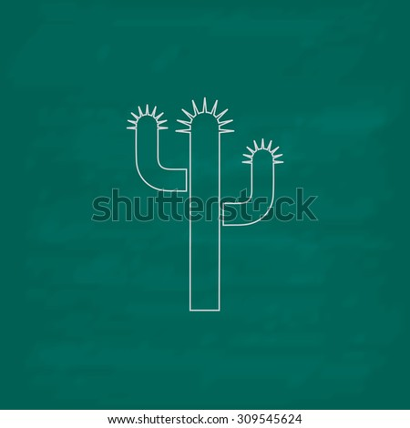 Cactus. Outline icon. Imitation draw with white chalk on green chalkboard. Flat Pictogram and School board background. Illustration symbol - stock photo