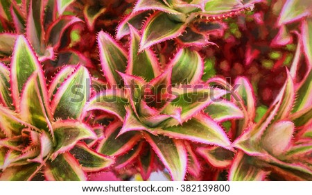 Cactus red leaf, closeup view - Canvas oil painting, digital illustration art work.