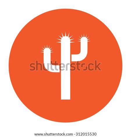 Cactus. Simple flat white icon in the orange circle. illustration symbol - stock photo