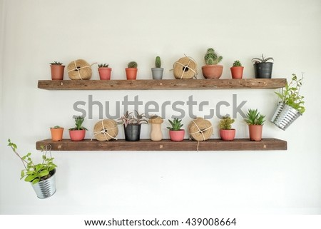 Cactus Window Shelve Background green Hipster Minimal Design for Good - stock photo