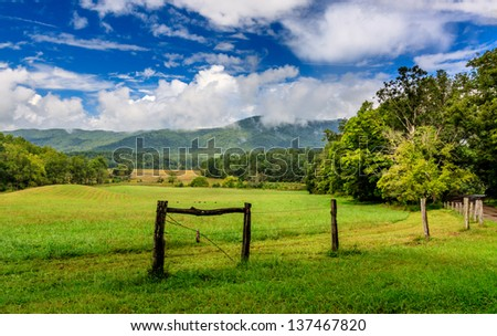 Cades cove the great smokey mountains national park, lush green with old fence and wild turkeys - stock photo