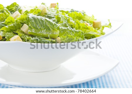 Caesar salad on white with parmesan cheese. - stock photo