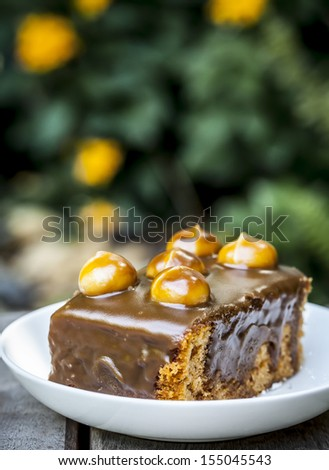 cake chocolate on table in garden