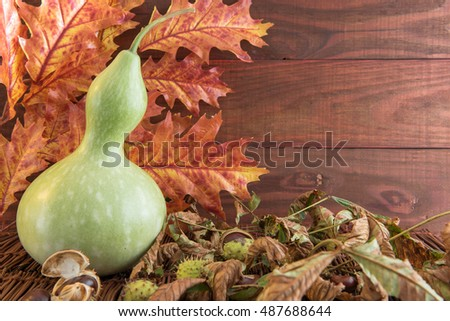 Calabash in the autumn leaves on the wooden background.