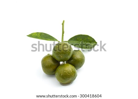 Calamansi lime with green leaf on isolated background