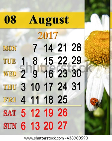 calendar for August 2016 with ribbon of ladybirds on the white camomile - stock photo