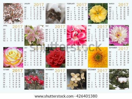 Calendar 2017 with nature images: contains the months and days.  The layout for printing, horizontal. - stock photo