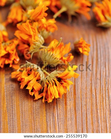 Calendula dried flowers (Calendula officinalis) on a wooden background - stock photo