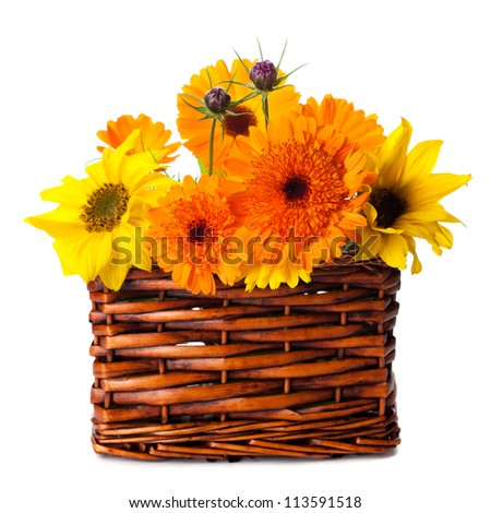 calendula flowers and sunflowers in a basket on a white background
