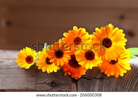 calendula flowers on a old wooden table - stock photo