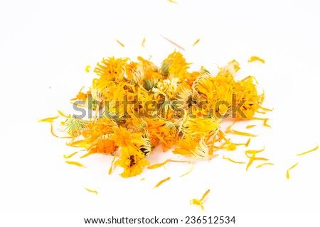 Calendula officinalis in white background - stock photo