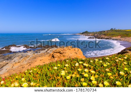 California Bean Hollow State beach in Cabrillo Highway on State Route 1 San Mateo - stock photo