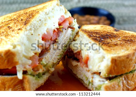 Chicken Sandwich - Grilled chicken, tomato, bacon, onion, mozzarella ...
