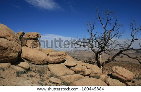 California desert scene with rocks and a burnt pine tree - stock photo