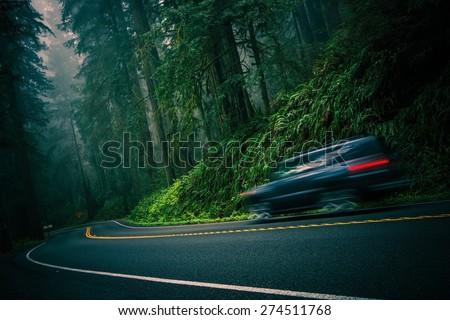 California 101 Foggy Redwood Highway and Speeding Car. Crescent City, California, United States. - stock photo