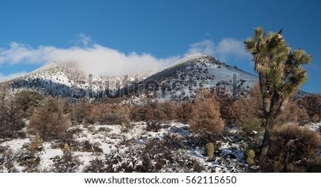 california landscape around walker pass elevation 写真素材 562115650