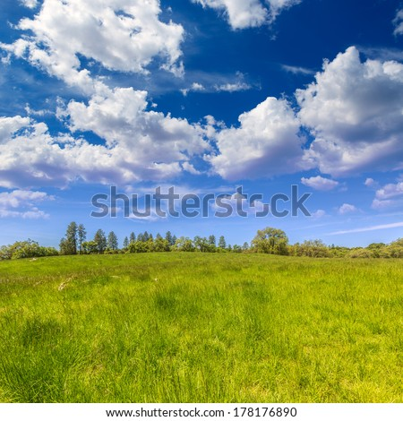 California meadow ranch in a blue sky spring day USA - stock photo