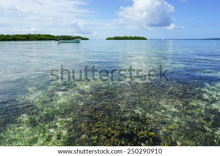 Calm and clear water with coral reef below sea surface and a boat with mangrove islands in background, Caribbean, Panama, Central America - stock photo