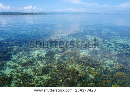 Calm and clear water with coral reef below sea surface and islands at the horizon, Caribbean, Panama, Central America