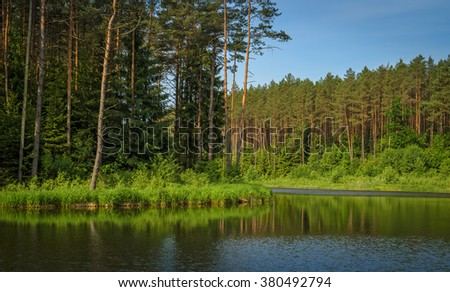 calm and wide river in summer forest - stock photo